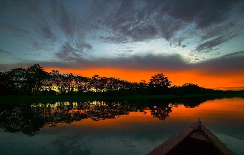 canh hoang hon dep tai rung Amazon