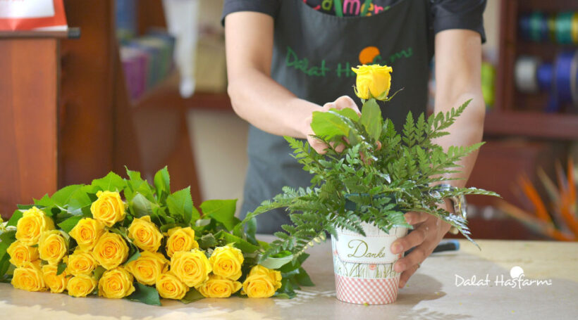 cam hoa va bay tri hoa tai shop hoa tuoi