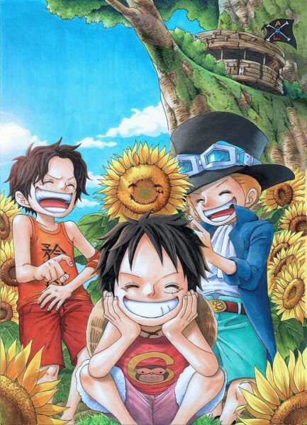 hinh anh luffy vui ve