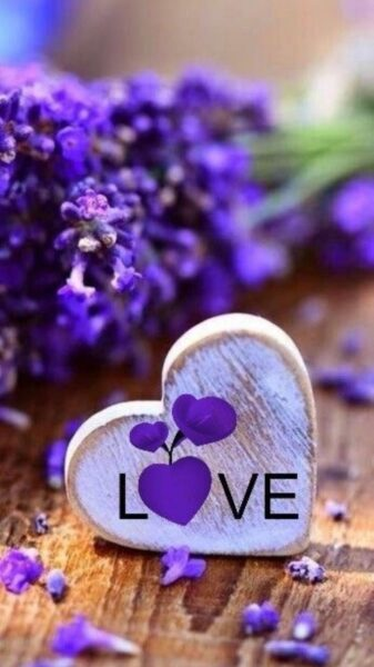 ảnh chữ Love lãng mạn bên trái tim bằng gỗ và hoa lavender