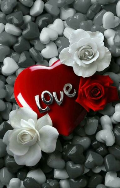 ảnh chữ love trên trái tim đỏ rực rỡ