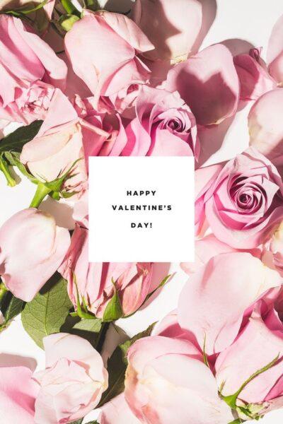 ảnh chúc mừng valentine day và hoa hồng