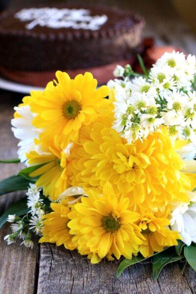 Ảnh hoa cúc vàng