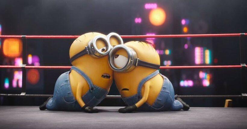 hai chú minion đang chơi boxing