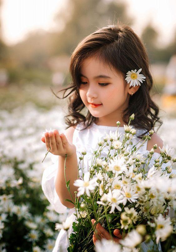 hình ảnh bé gái xinh xắn bên hoa cúc họa mi