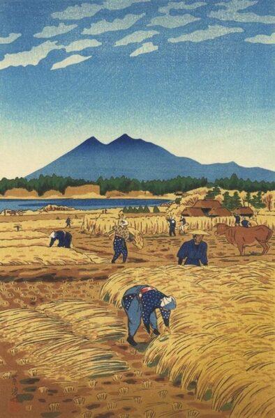 Tranh phong cảnh đơn giản dễ vẽ nhất về làng quê mùa gặt