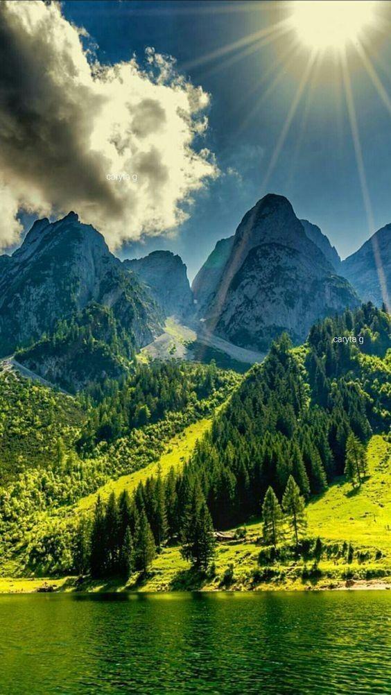 Vẽ tranh đề tài phong cảnh núi rừng