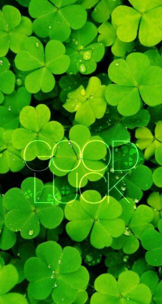 ảnh cỏ 3 lá kèm chữ good luck