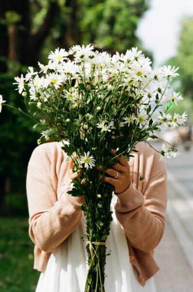 Ảnh bó hoa cúc họa mi đơn giản