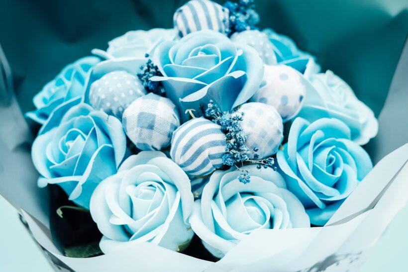 Ảnh hoa hồng xanh đẹp lung linh