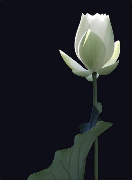 Ảnh hoa sen xanh đẹp kiêu hãnh