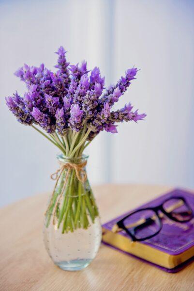 Ảnh lọ hoa lavender bên cuốn sách