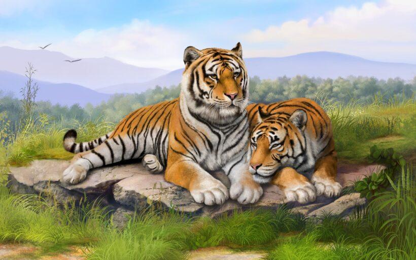 ảnh nền con hổ đẹp nhất