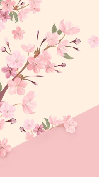 ảnh nền màu hồng cute