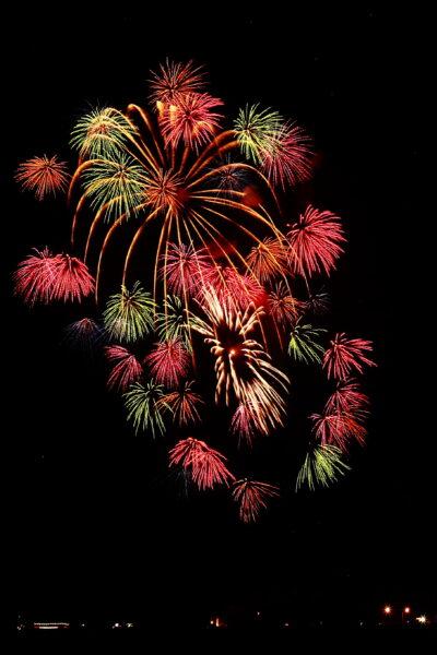 Hình ảnh pháo hoa sắc màu trên bầu trời đêm