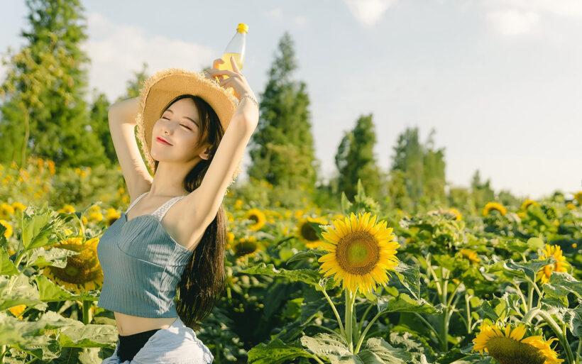 hình nền hot girl bên vườn hoa hướng dương