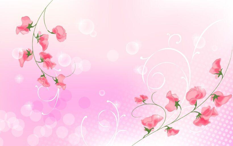 hình nền màu hồng dễ thương cách điệu