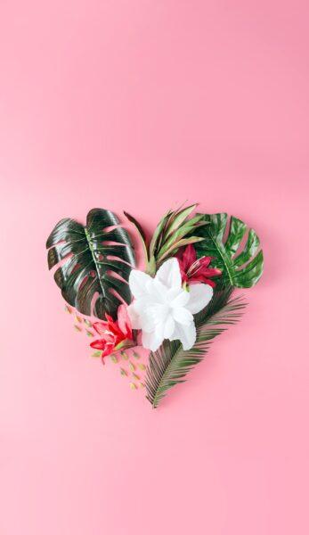 hình nền màu hồng dễ thương về trái tim