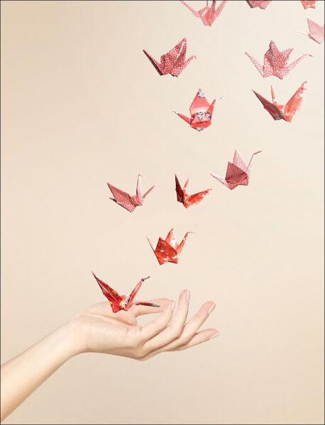hạt giấy - hình ảnh hy vọng đẹp