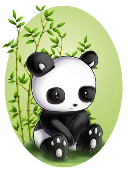 hình ảnh avatar gấu trúc dễ thương