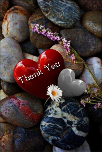 hình ảnh cảm ơn từ trái tim