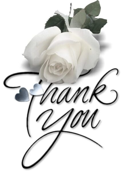 hình ảnh cảm ơn và bông hoa hồng