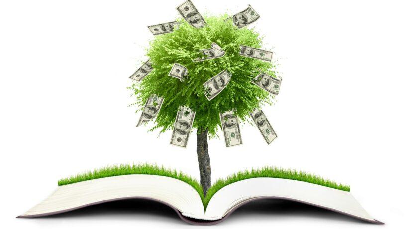hình ảnh cây tiền đô la