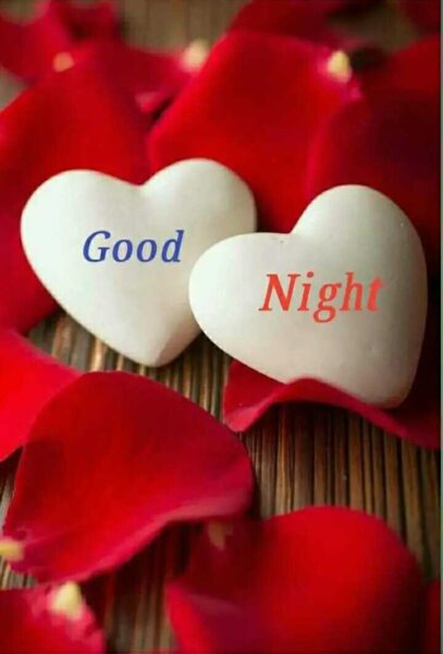 hình ảnh chúc ngủ ngon kute về tình yêu