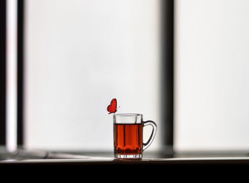hình ảnh con bướm đậu trên chiếc ly