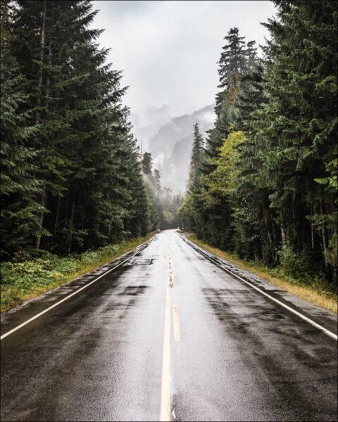 hình ảnh mưa đẹp buồn lãng mạn con đường giữa rừng núi