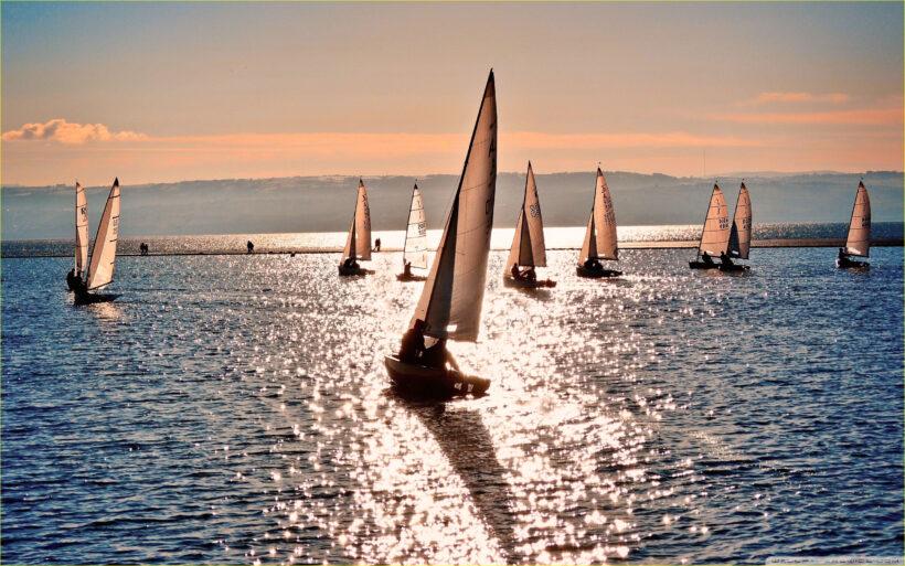 Hình ảnh nhiều thuyền buồm trên biển
