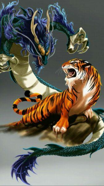 hình ảnh rồng 3d và con hổ