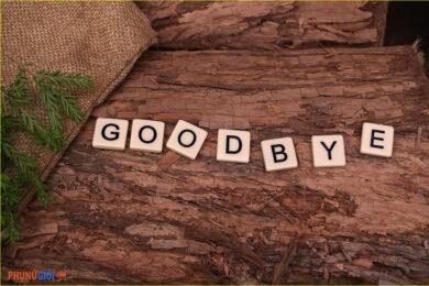 Hình ảnh tạm biệt