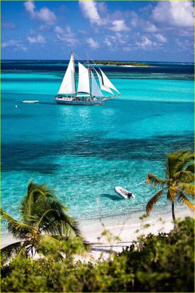 Hình ảnh thuyền buồm và hàng dừa