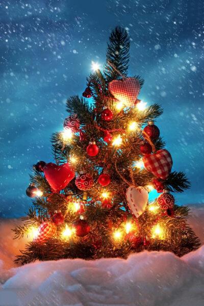 HÌnh ảnh tuyết rơi bên cây Noel