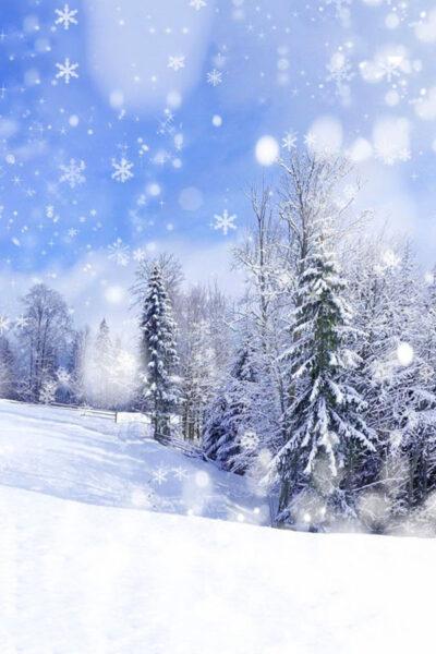 Hình ảnh tuyết rơi mùa đông