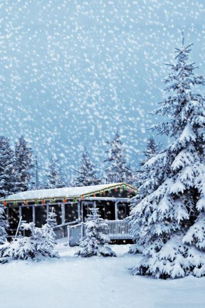Hình ảnh tuyết rơi trắng xóa cả vùng trời