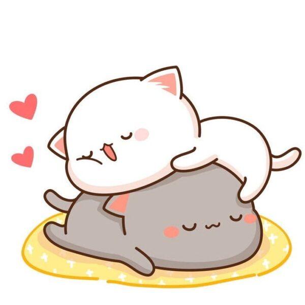 hình vẽ cute 2 bé mèo đang ngủ