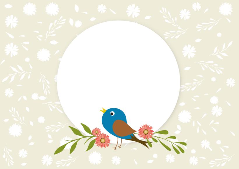Khung hình đẹp chú chim dễ thương