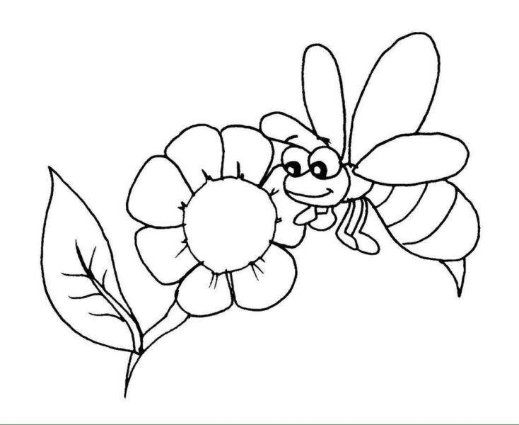 Tranh tô màu bông hoa và ong