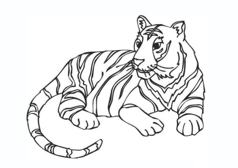 Tranh tô màu con hổ vằn cho bé trai