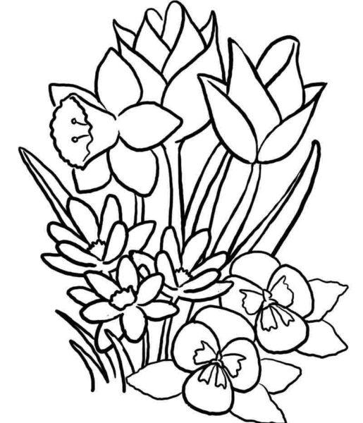 Tranh tô màu hình những bông hoa xinh đẹp