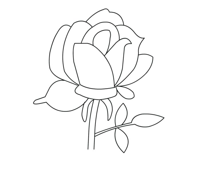 Tranh tô màu hoa hồng hình vẽ đơn giản