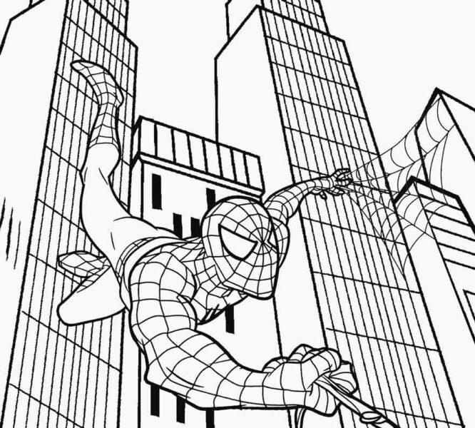 Tranh tô màu người nhện đang leo qua các toà nhà cao tầng bằng những sợi tơ