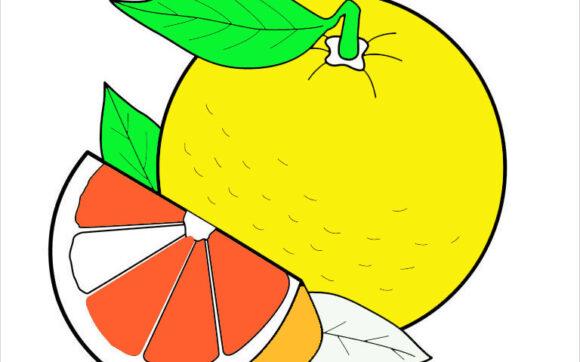 tranh tô màu quả cam cho bé
