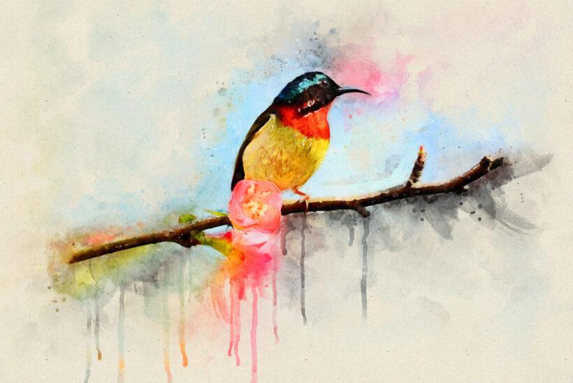 vẽ tranh đề tài mùa xuân cành đào và con chim