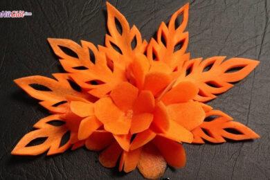 cách tỉa hoa cà rốt