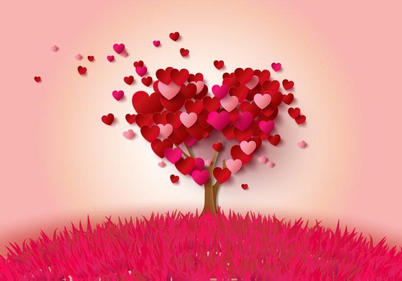 cây trái tim - hình ảnh tình yêu dễ thương