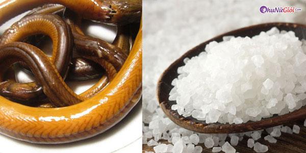 Dùng muối loại bỏ nhớt của lươn