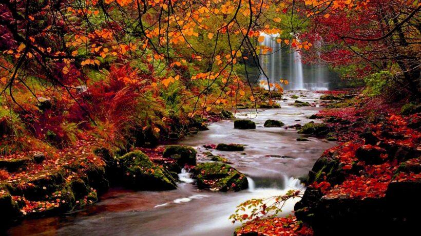 hình ảnh con suối mùa thu
